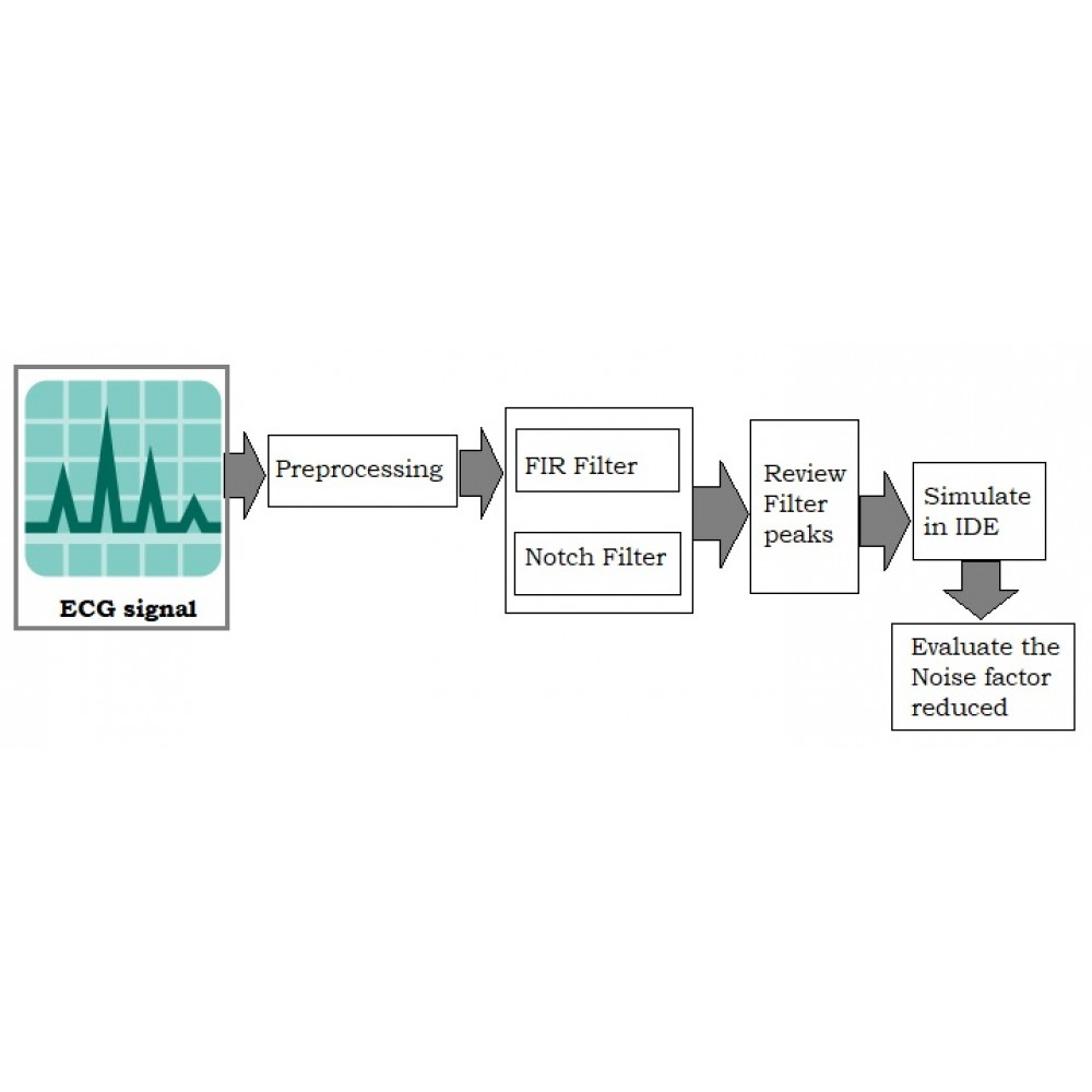 Real-Time Filtering and ECG Signal Processing Based on Dual-Core Digital Signal Controller System