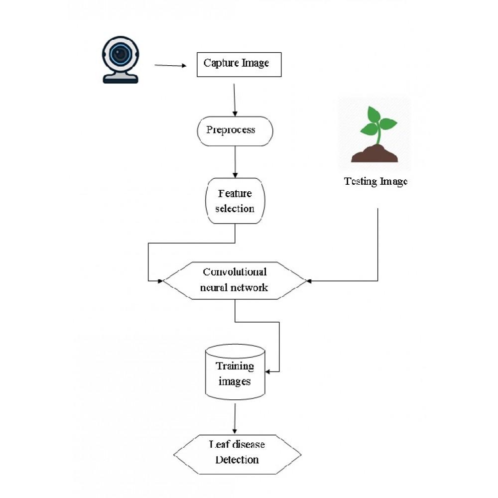 DCGAN-Based Data Augmentation for Tomato Leaf Disease Identification